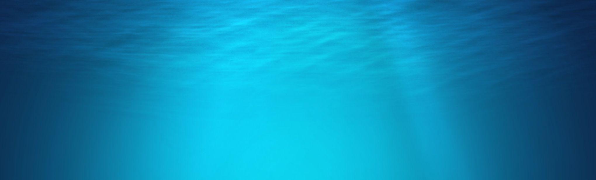 Mills Web Design - ocean